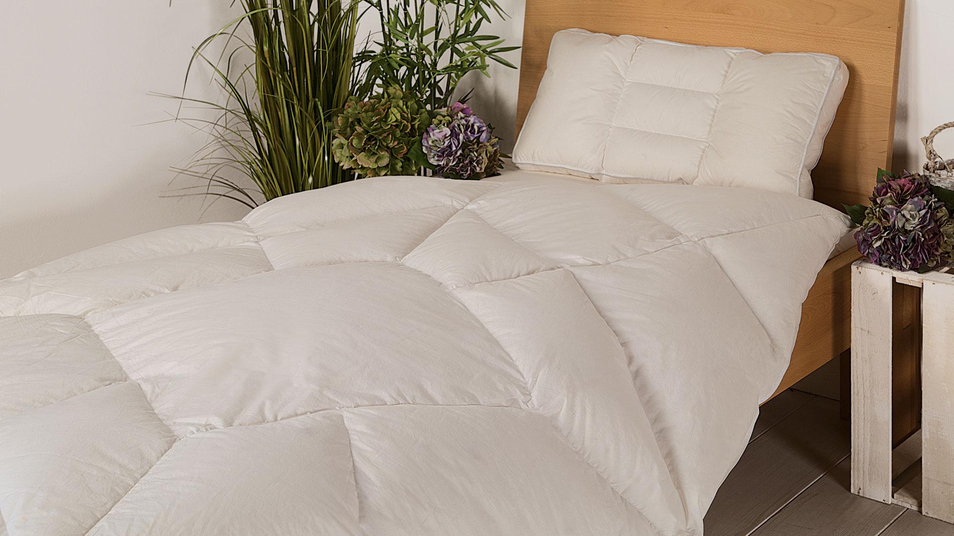 Daunen Körperzonen Bettdecke Ansara Forma