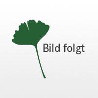 "Yogamatte ""Lyovita"""